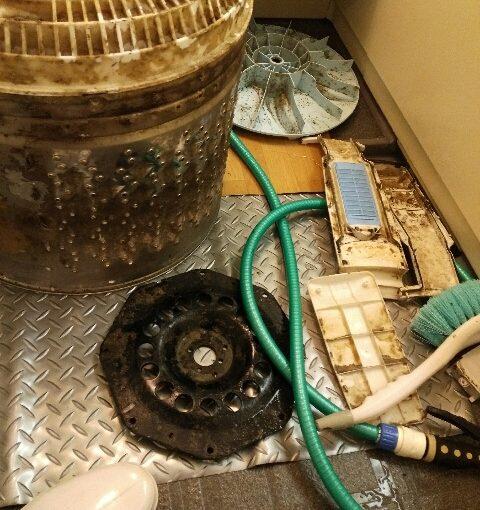 洗濯機分解クリーニング 東芝AW-80DL